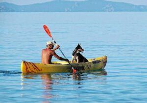 sit on vs sit in kayaks
