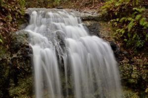 Hiking Trails in Florida With Waterfalls-