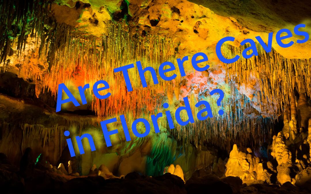 Where Are There Caves In Florida? Hidden Wonders!