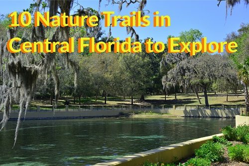 10 Nature Trails in Central Florida to Explore in 2021