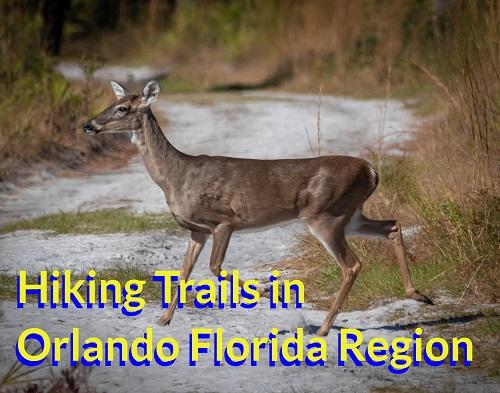 10 Hiking Trails in Orlando Florida Region – 2021