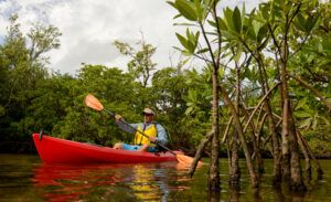 kayak trails in south florida
